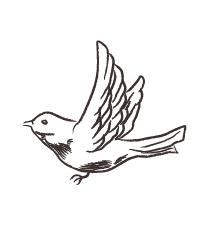手書き鳥 素材2
